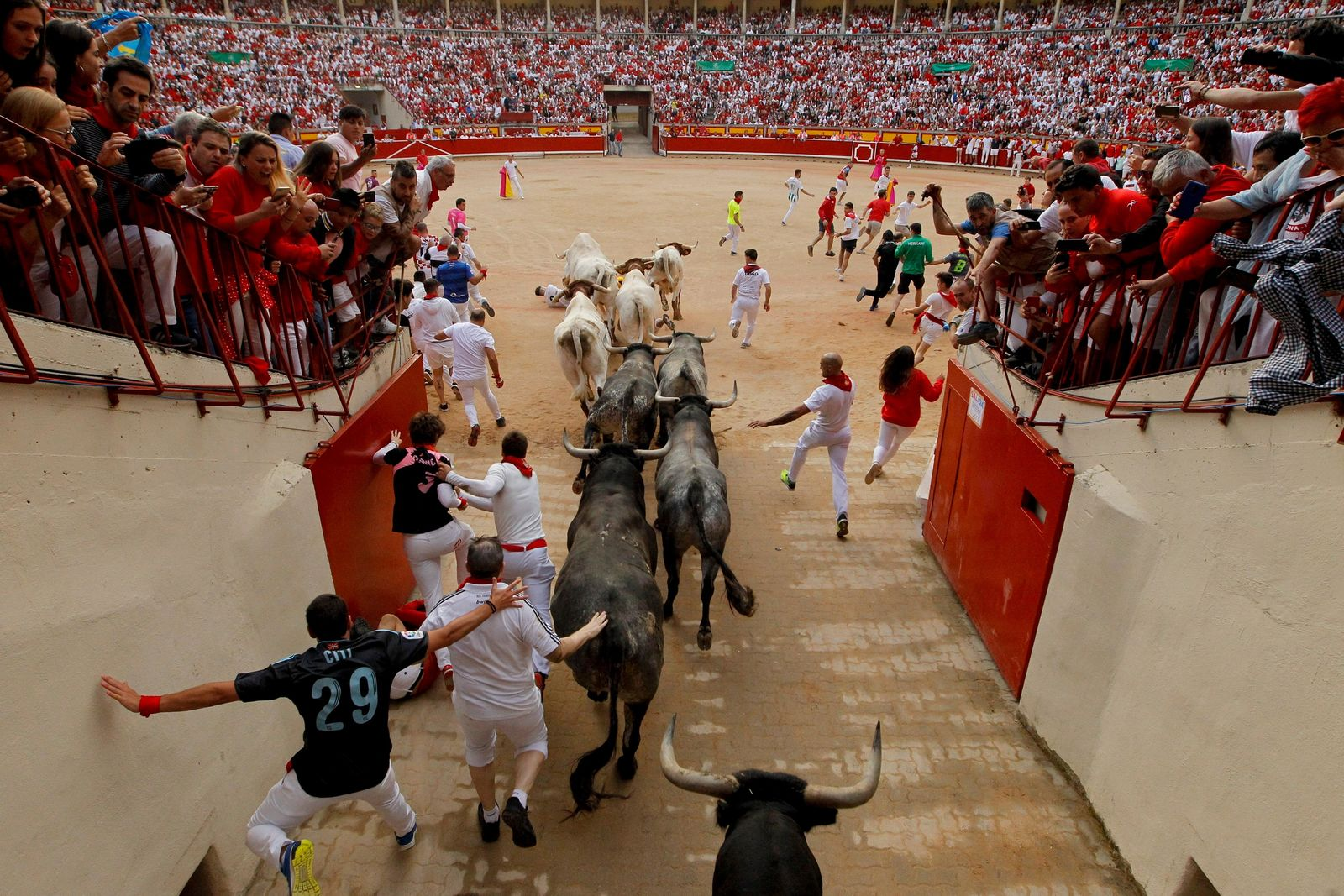 "Revellers and fighting bulls arrive at the bullring during the running of the bulls at the San Fermin Festival, in Pamplona, northern Spain, Sunday, July 14, 2019. The San Fermin fiesta made internationally famous by Ernest Hemingway in his novel ""The Sun Also Rises"" draws around 1 million partygoers each year.(AP Photo/Alvaro Barrientos)"