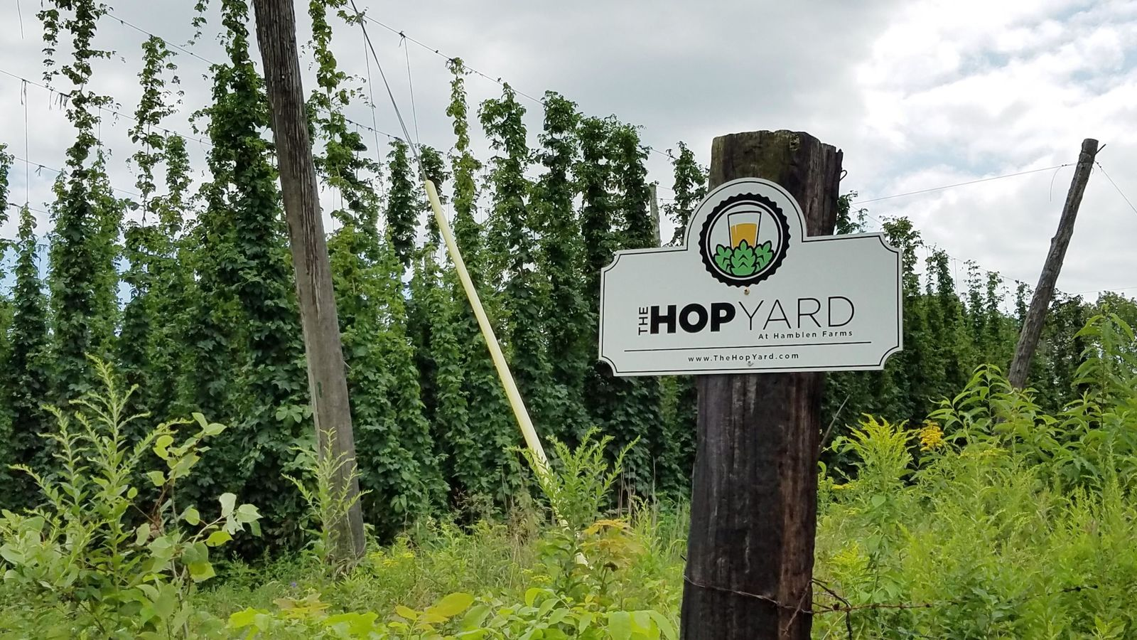 The Hop Yard is in Gorham. (WGME)