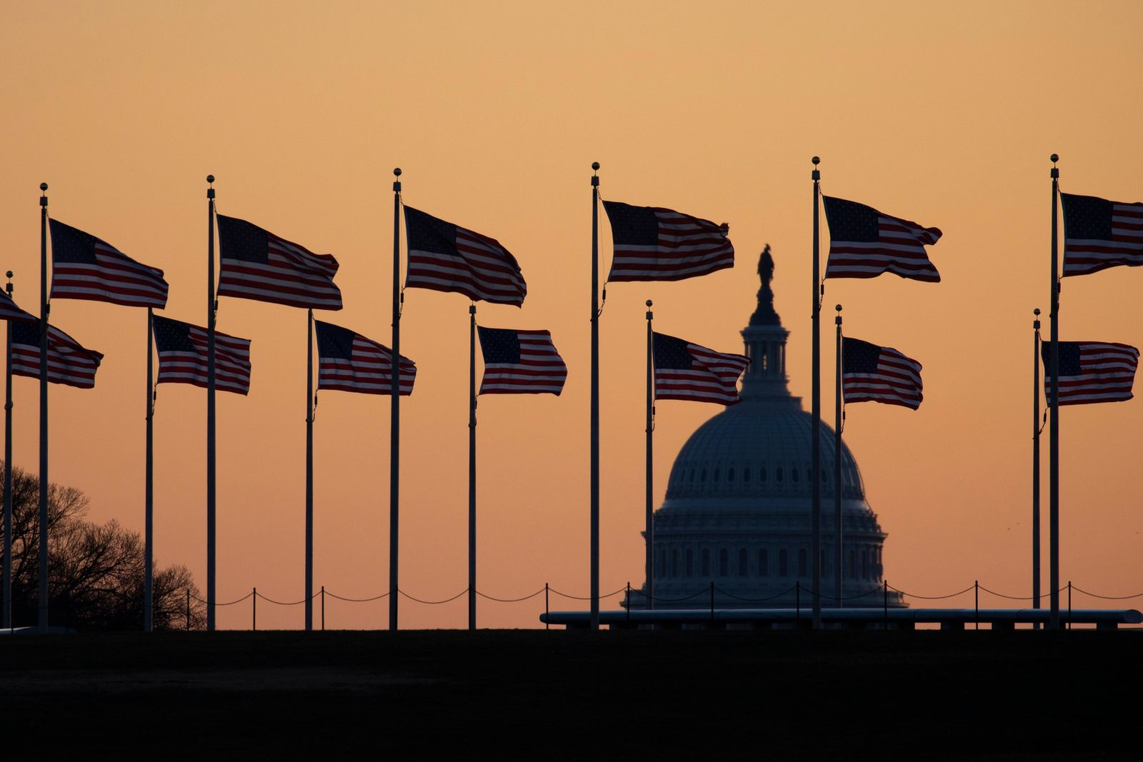 American flags blow in wind around the Washington Monument with the U.S. Capitol in the background at sunrise on Monday, Jan. 20, 2020, in Washington.{ } (AP Photo/Jon Elswick)