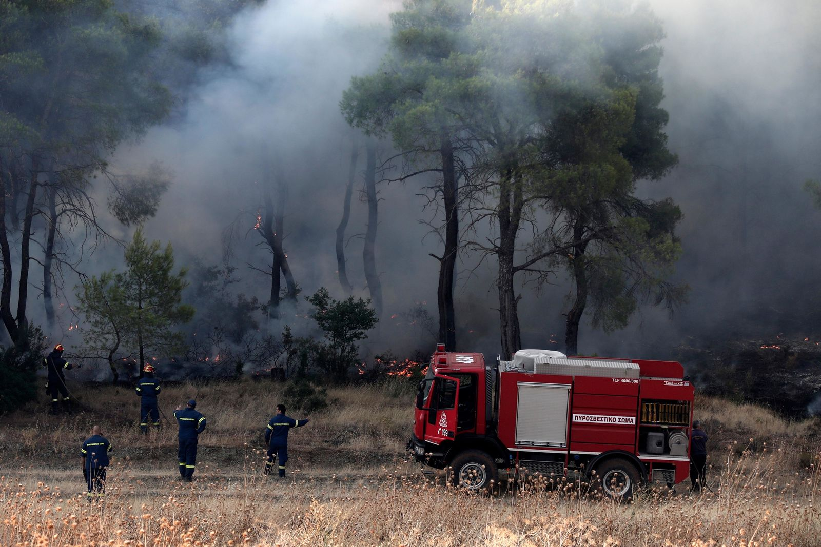 File - Firefighters try to extinguish a wildfire in Makrymalli village on the Greek island of Evia, Wednesday, Aug. 14, 2019. (AP Photo/Yorgos Karahalis)
