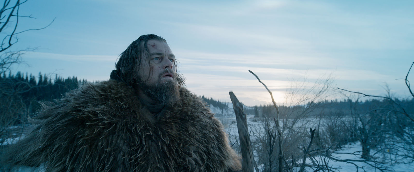 "This photo provided by courtesy of  Twentieth Century Fox shows, Leonardo DiCaprio as Hugh Glass, in a scene from the film, ""The Revenant,"" directed by Alejandro Gonzalez Inarritu. (Courtesy Twentieth Century Fox via AP)"
