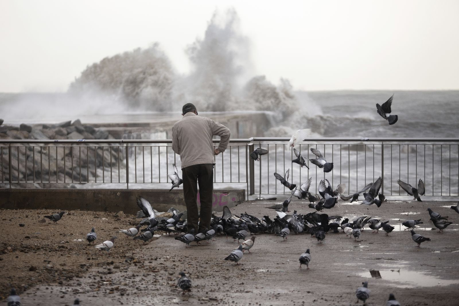 A man feeds pigeons next the breakwater in Barcelona, Spain, Wednesday, Jan. 22, 2020.{ } (AP Photo/Joan Mateu)