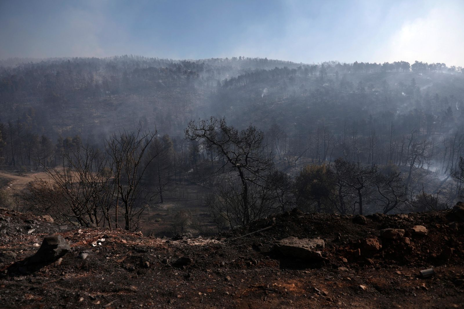 File- Smoke rises from a burned forest after a wildfire in Stavros village on the Greek island of Evia, Wednesday, Aug. 14, 2019.{ } (AP Photo/Yorgos Karahalis)