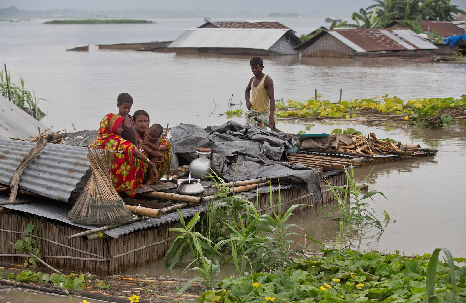 Flood affected villagers take shelter on the roof of their submerged houses in Katahguri village along the river Brahmaputra, east of Gauhati, India, Sunday, July 14, 2019. Officials in northeastern India said more than a dozen people were killed and over a million affected by flooding. Rain-triggered floods, mudslides and lightning have left a trail of destruction in other parts of South Asia. (AP Photo/Anupam Nath)
