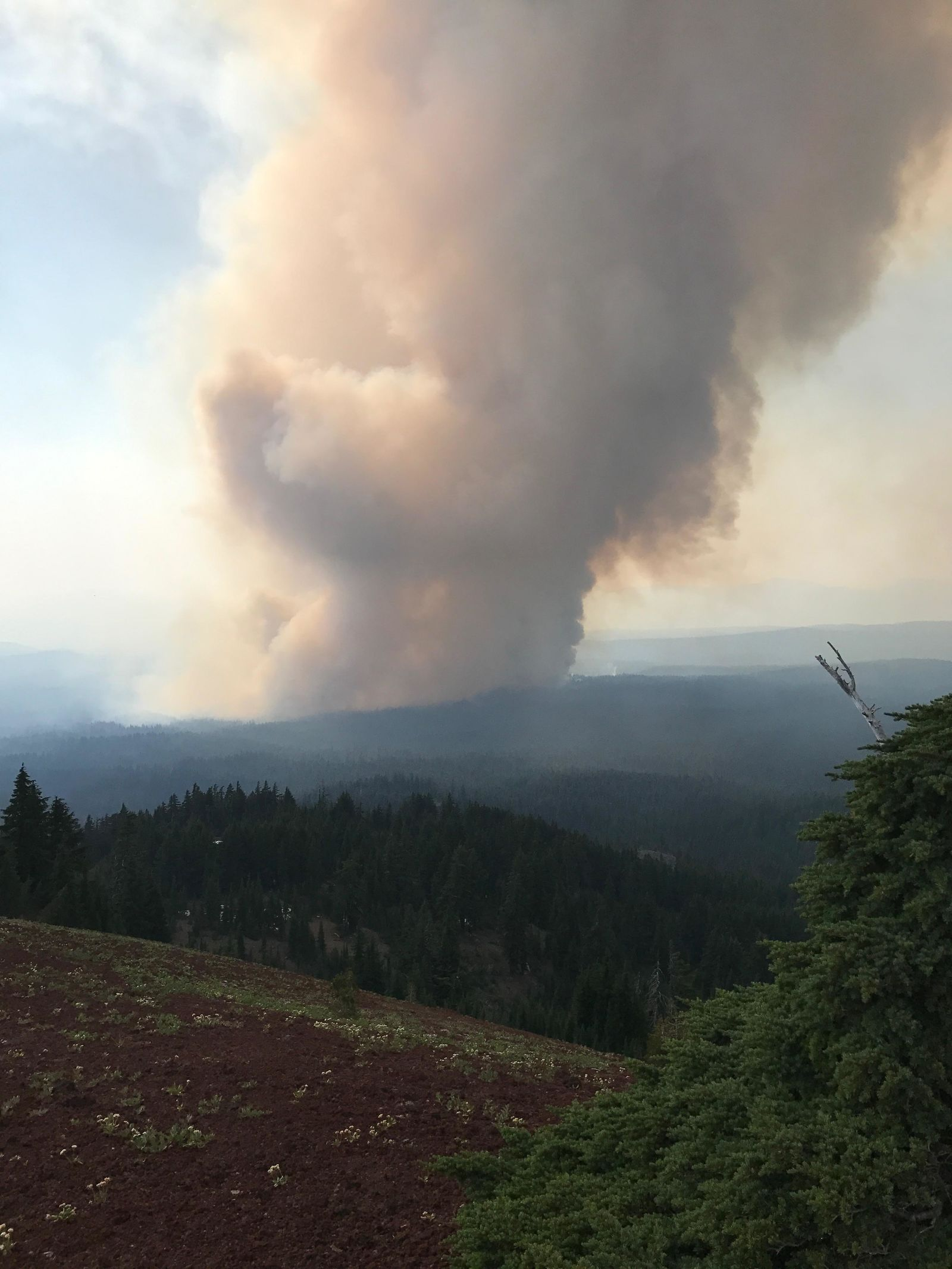 Spruce Lake Fire Column observed near Watchman Lookout on the west rim of Crater Lake NWIMT 13 - Photo by Robert Scoggin