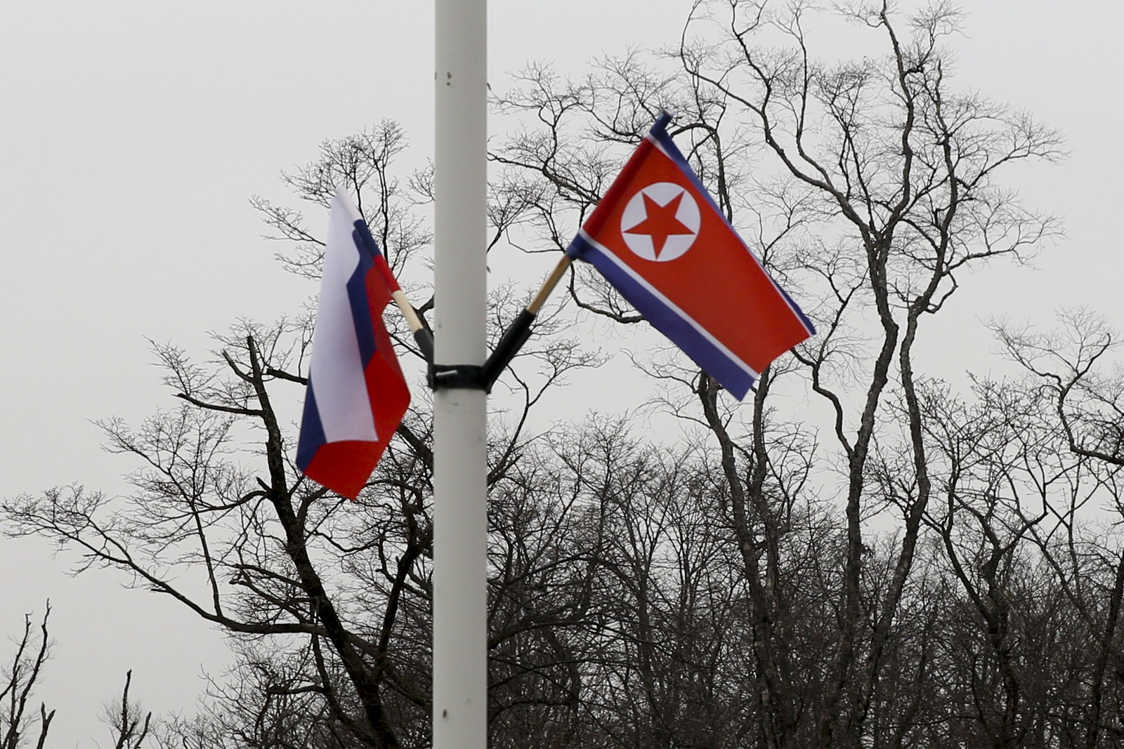 Flags of Russia and North Korea, right, are seen along the road on Russky Island, in Vladivostok, Russia, Tuesday, April 23, 2019.{ } (AP Photo/Mari Borodina)