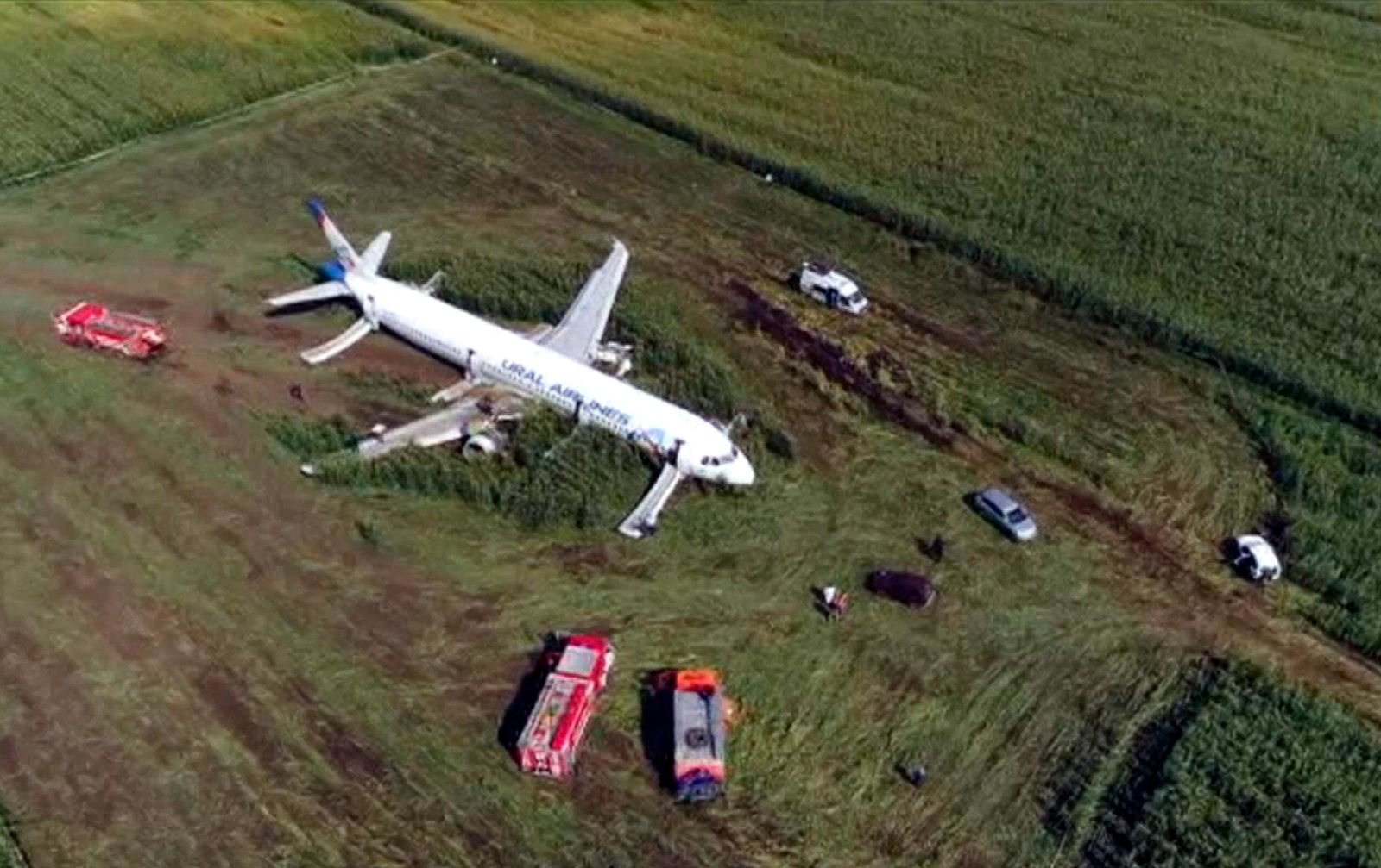 In this video grab provided by the RU-RTR Russian television, a Russian Ural Airlines' A321 plane is seen after an emergency landing in a cornfield near Ramenskoye, outside Moscow, Russia, Thursday, Aug. 15, 2019.{ } (RU-RTR Russian Television via AP)