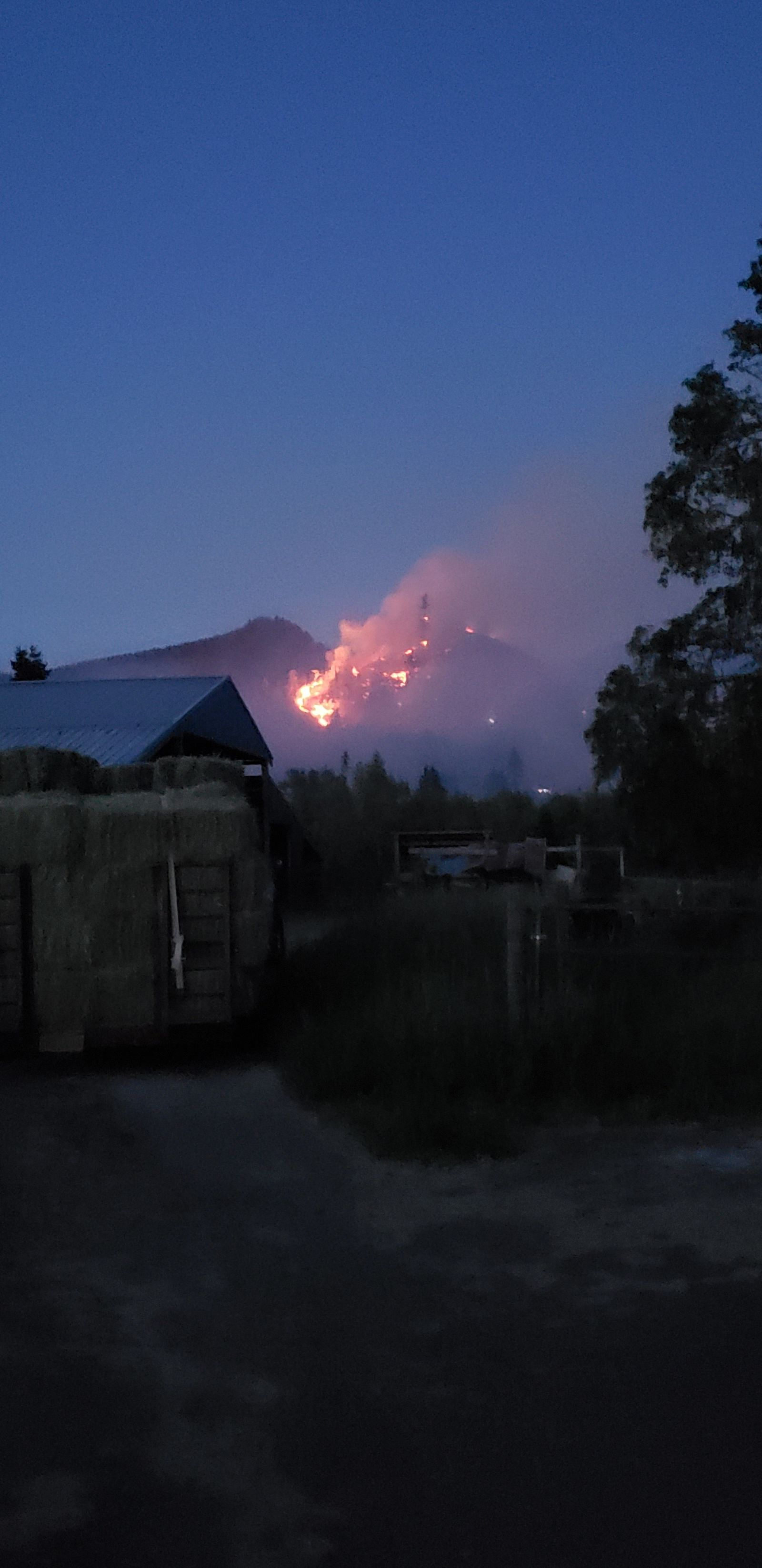 Michelle Lezcano shared this photo of the Dowens Road 2 Fire east of Cottage Grove, Oregon.