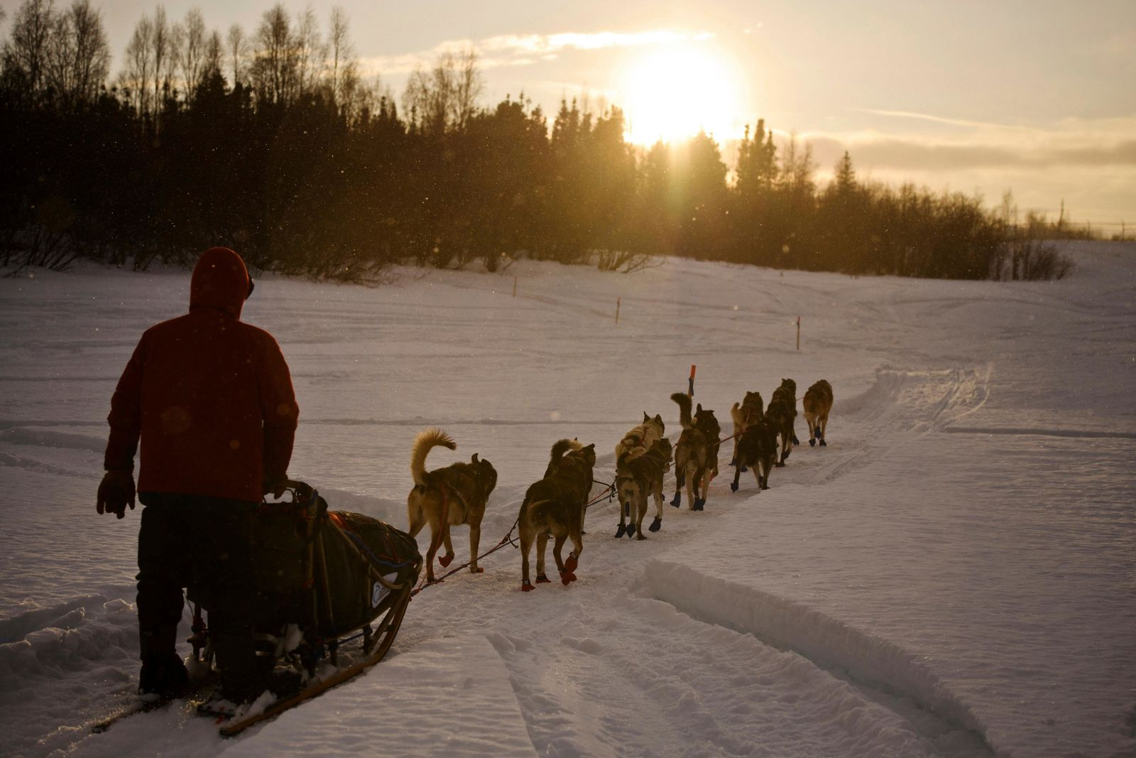 FILE - In this March 8, 2018 file photo Musher Ramey Smyth approaches Shageluk, Alaska, as rain falls and some sun hits the area during the Iditarod Trail Sled Dog Race. (Marc Lester/Anchorage Daily News via AP, File)