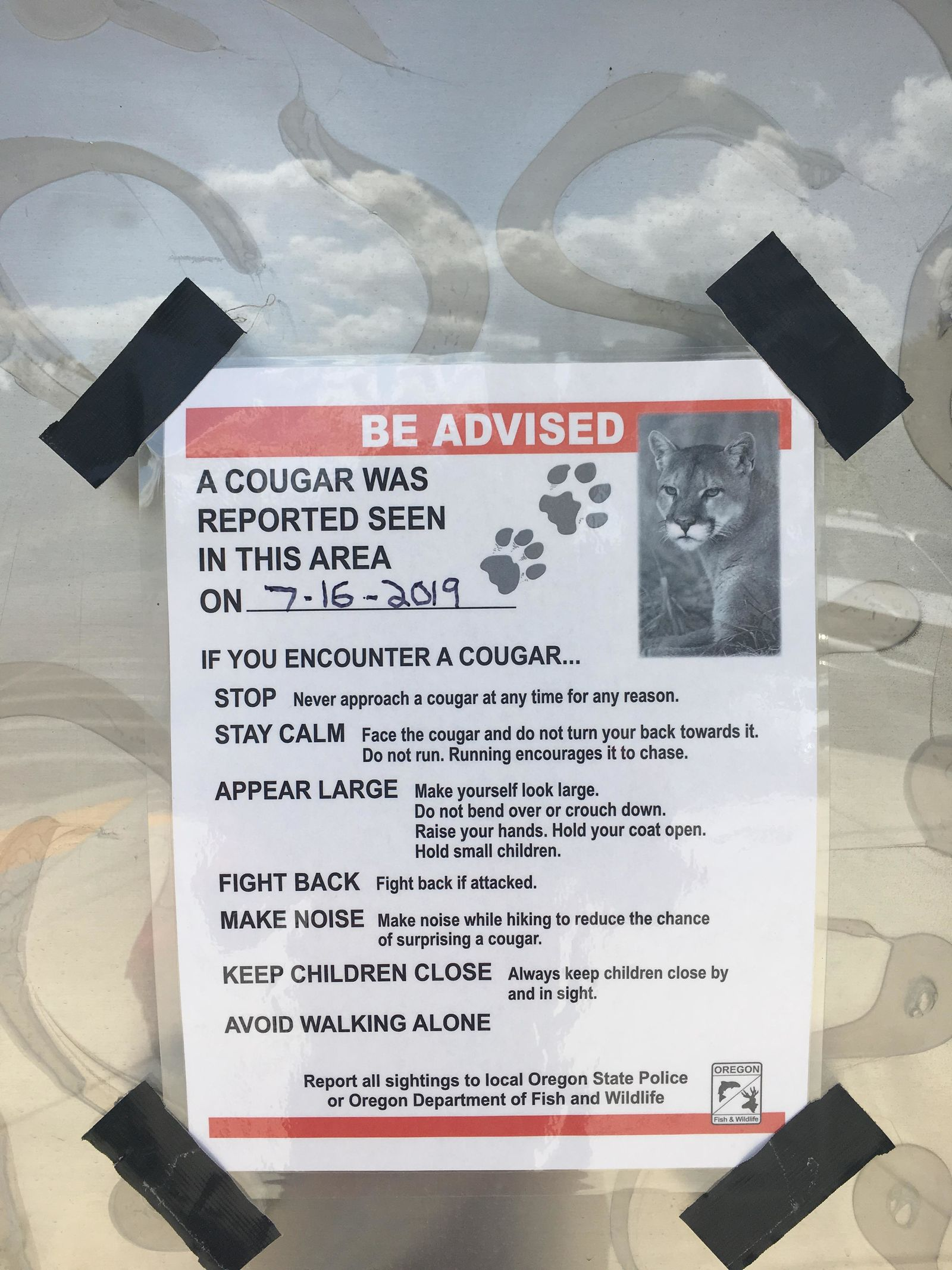 Willamalane Park and Recreation District is warning people about a cougar near the Mill Race path. (SBG)