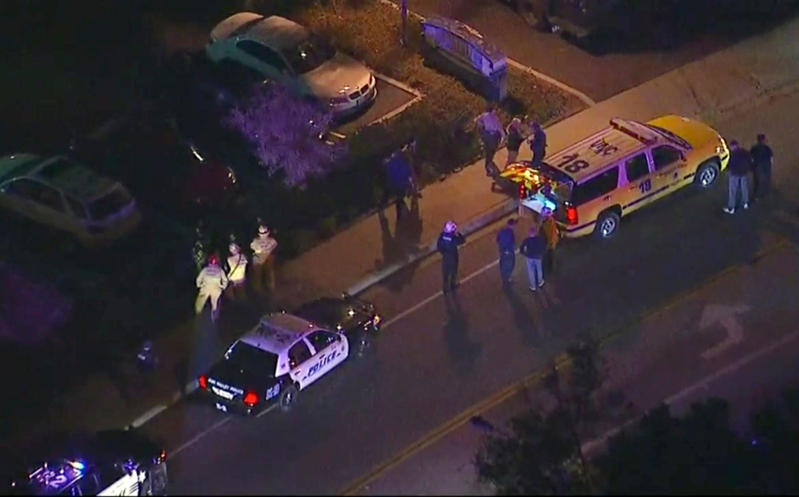 In this image made from aerial video, police vehicles line a road in the vicinity of a shooting in Thousand Oaks, California, early Thursday, Nov. 8, 2018.{ } (KABC via AP)