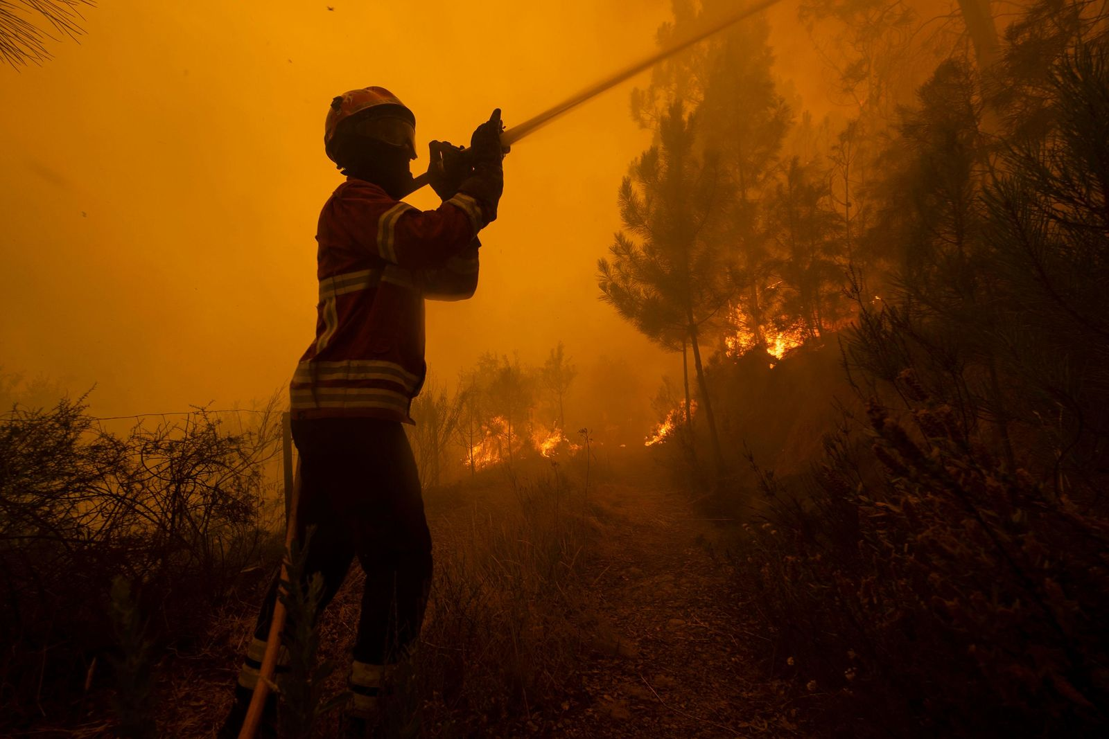 Firefighters try to extinguish a wildfire at the village of Chaveira, near Macao, in central Portugal on Monday, July 22, 2019. (AP Photo/Sergio Azenha)