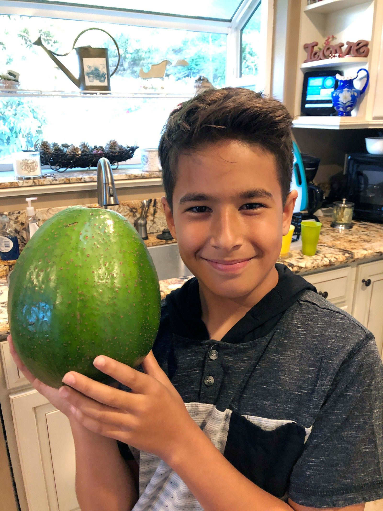 This Dec. 13, 2018 photo provided by Juliane Pokini shows Lo'ihi Pokini posing for a photo with the Guinness World Record Heaviest Avocado at Kula Country Farms in Kula,Hawaii. The Pokini family from the island of Maui received the Guinness certificate this week for the avocado weighing 5.6 pounds (2.54 kilograms), The Maui News reported Thursday, Oct. 11, 2019. (Juliane Pokini via AP)
