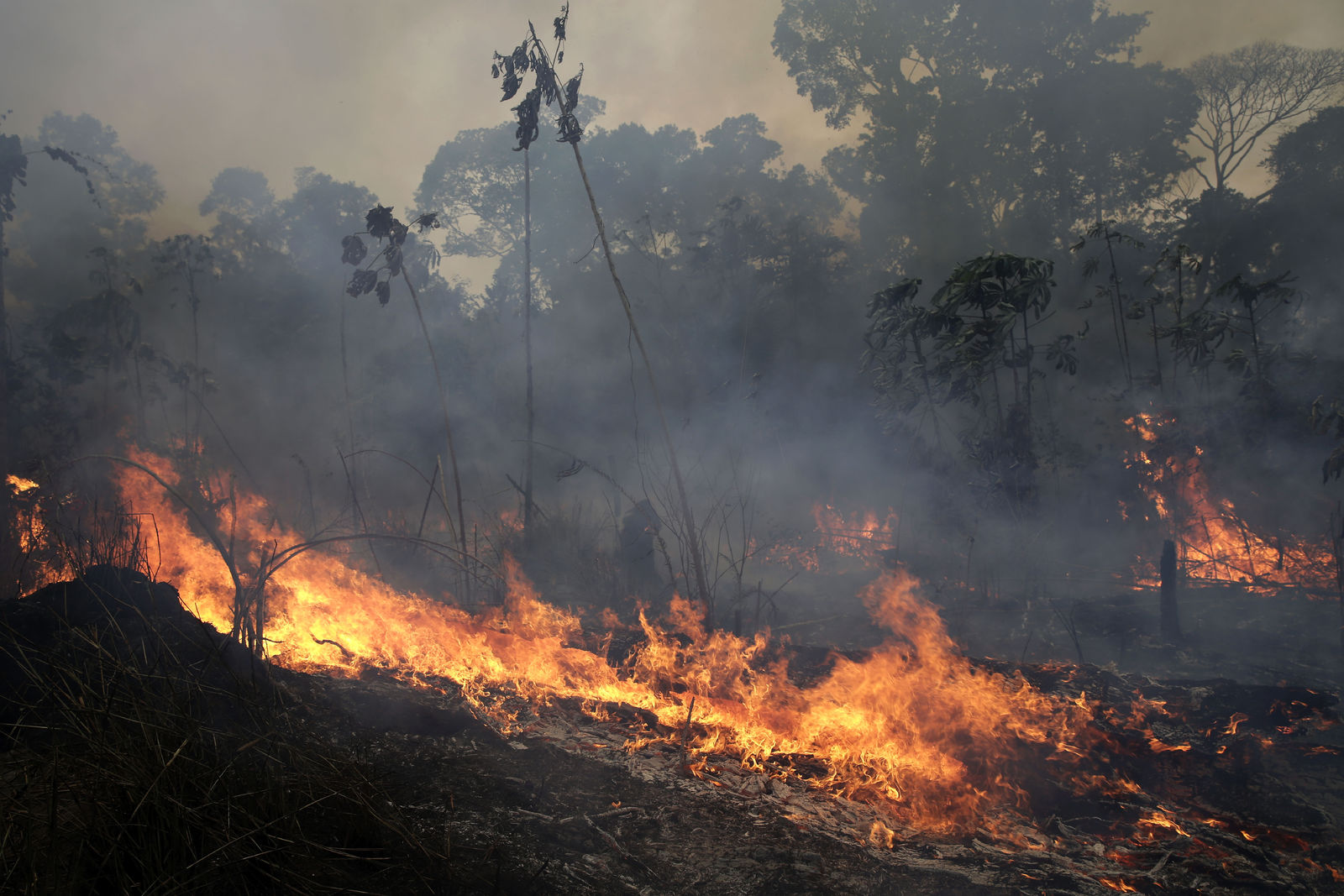 A fire burns along the road to Jacunda National Forest, near the city of Porto Velho in the Vila Nova Samuel region which is part of Brazil's Amazon, Monday, Aug. 26, 2019.{ } (AP Photo/Eraldo Peres)