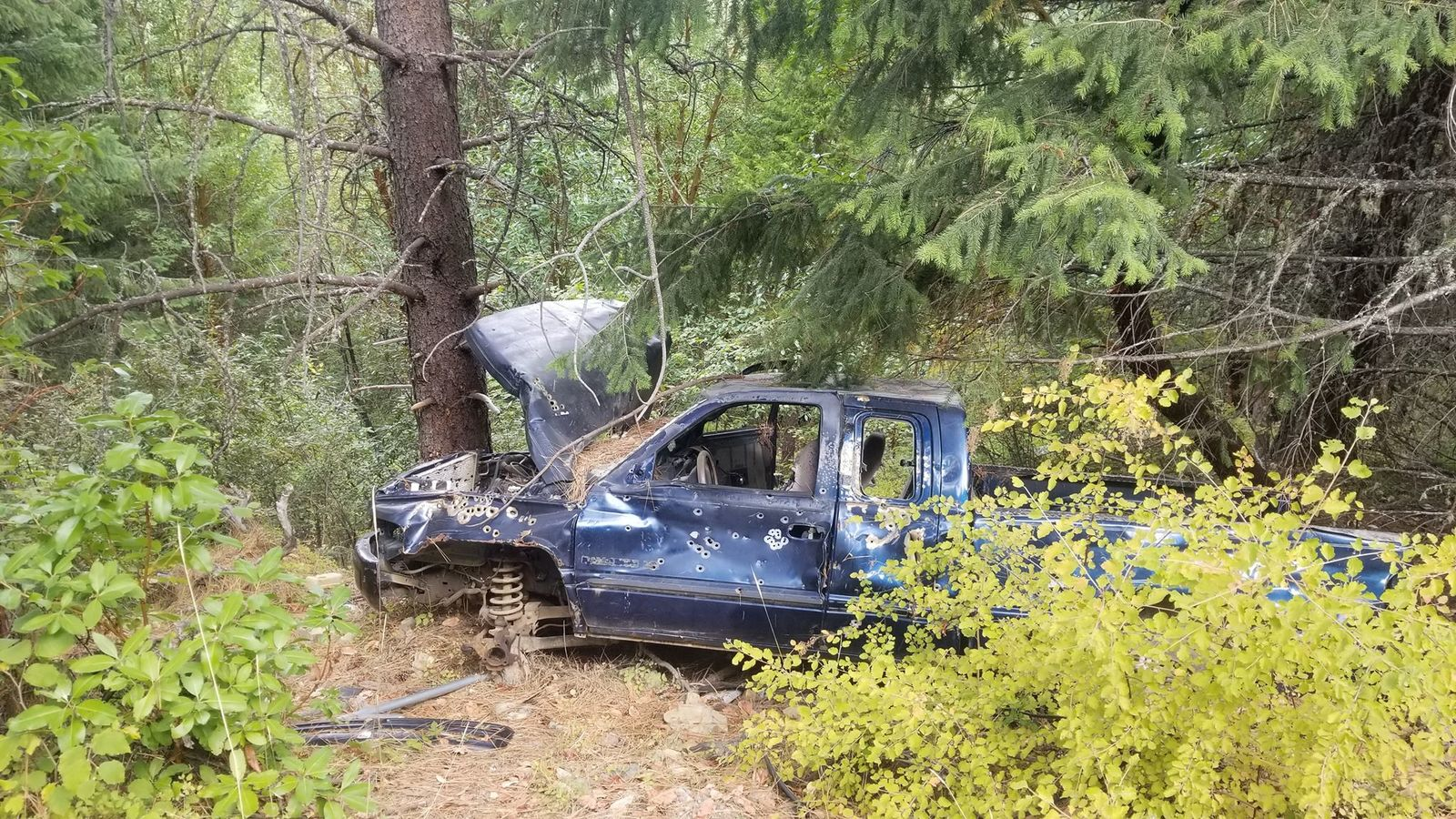 A truck that they found dumped in the forest. (Courtesy: Sam Watson){&nbsp;}<p></p>