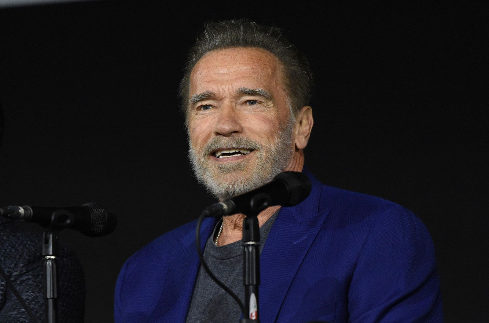 "Arnold Schwarzenegger speaks at the ""Terminator: Dark Fate"" panel on day one of Comic-Con International on Thursday, July 18, 2019, in San Diego. (Photo by Chris Pizzello/Invision/AP)"