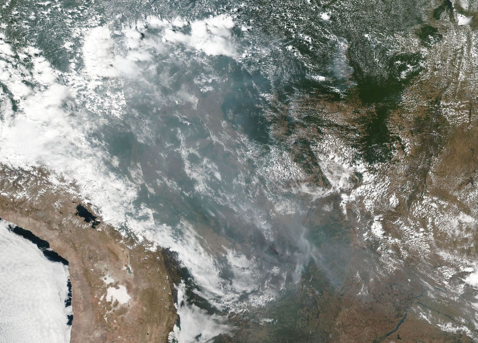 This satellite image provided by NASA shows the fires in Brazil on Aug. 20, 2019. (NASA via AP)