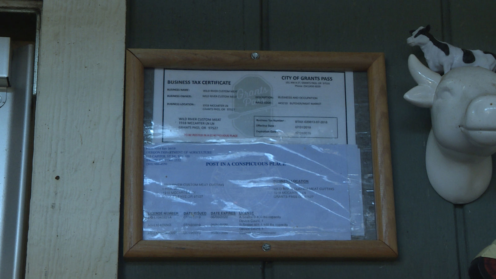 The business permit issued by the City of Grants Pass. (Carsyn Currier/News 10){&nbsp;}<p></p>
