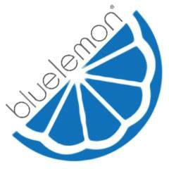 Blue Lemon celebrates 10th anniversary by donating 10% of sales to local non-profit. (Photo: Blue Lemon)