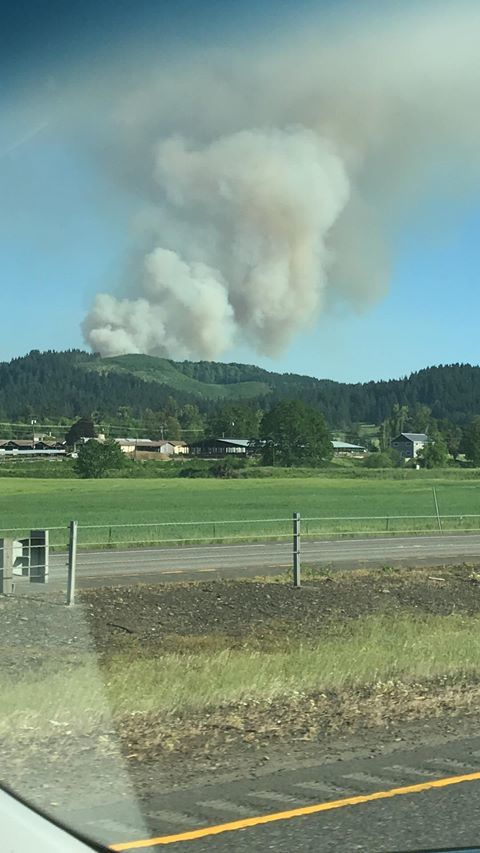 Smoke from a fire east of Cottage Grove as seen from Interstate 5 on Friday afternoon. (Michele Heckel)