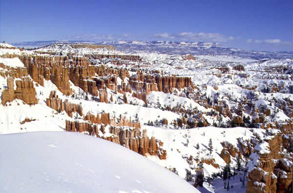 <p>Four people are dead and 30 are injured after a tour bus crashed near Bryce Canyon Friday, according to the Garfield County Sheriff's Office. (Photo courtesy of National Park Service){&nbsp;}</p>