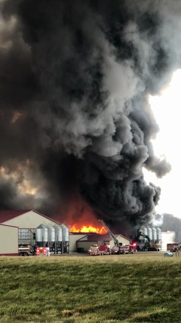 Large fire erupts at Konos Vande Bunte Egg farm in Otsego, Michigan. (WWMT/Courtesy Ann Jacus)Thumbnail