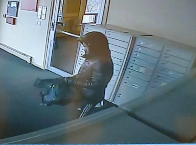 Cranston police released surveillance images of a man stealing packages from an apartment complex on Narragansett Boulevard on Jan. 7, 2020.