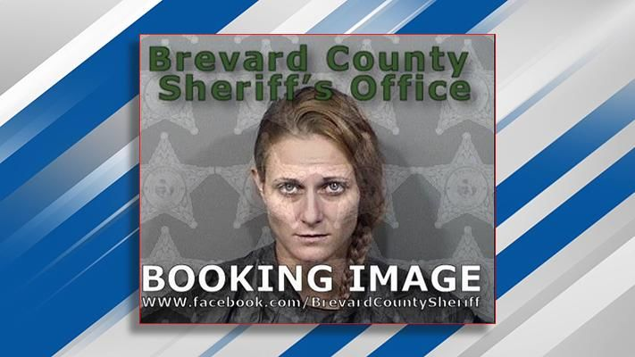 Sara Perry charged with animal abuse after investigators say she stuffed her dog into the trunk of a hot car. (Brevard County Sheriff's Office)
