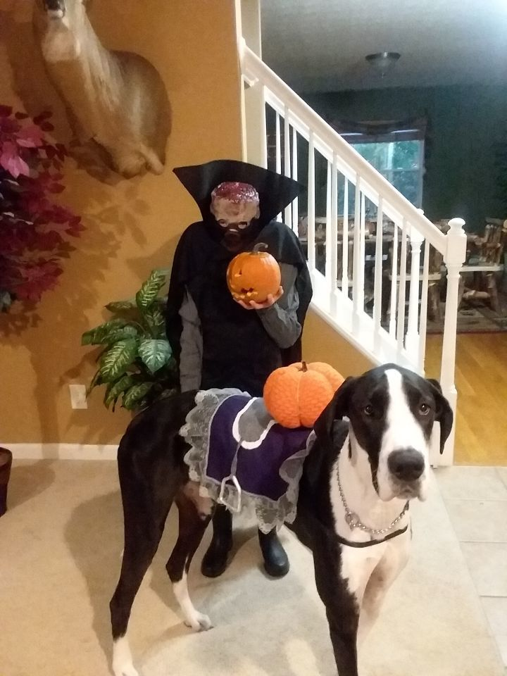 Sam and Athena are ready as the headless horseman and his horse - Lisa Henderer
