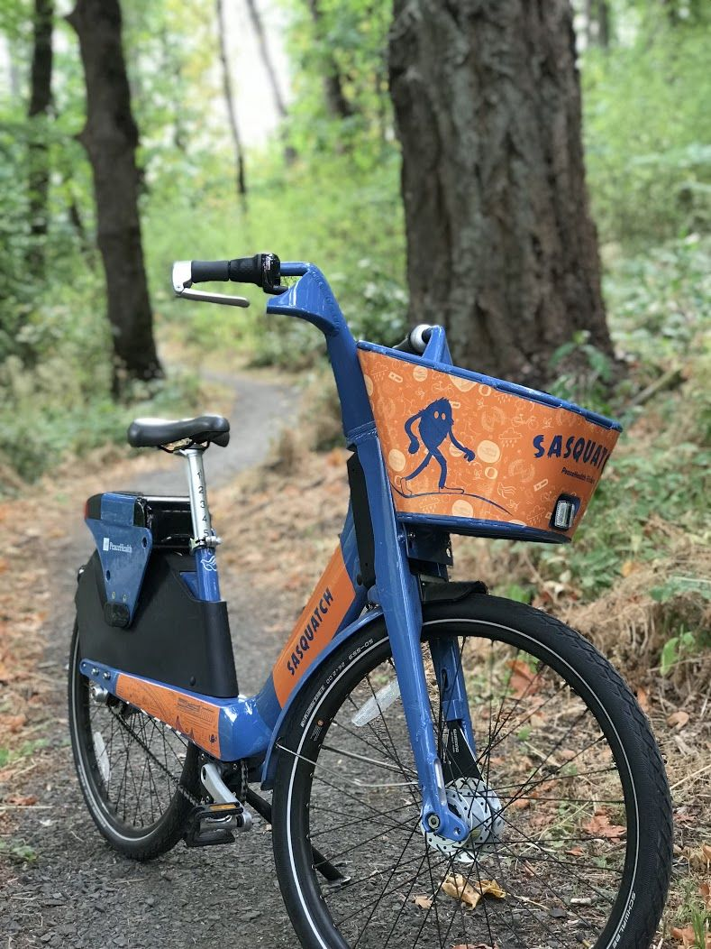 A unique Sasquatch-themed bicycle will be released into the wild Sunday. Riders who track down the beast of bike can share a photo of social media with the #IFoundSasquatch hashtag for a chance to win a one-year pass to PeaceHealth rides. If you show your post to staff at either Travel Lane County visitor centers - at 754 Olive St. in downtown Eugene or 3312 Gateway St. in Springfield - you can win a prize, too. (Photo courtesy PeaceHealth Rides)