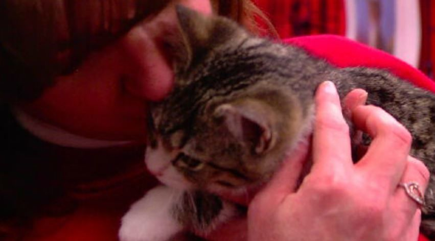 It's called 'My Furry Valentine,' and it is always held Valentine's Day weekend. (WKRC)