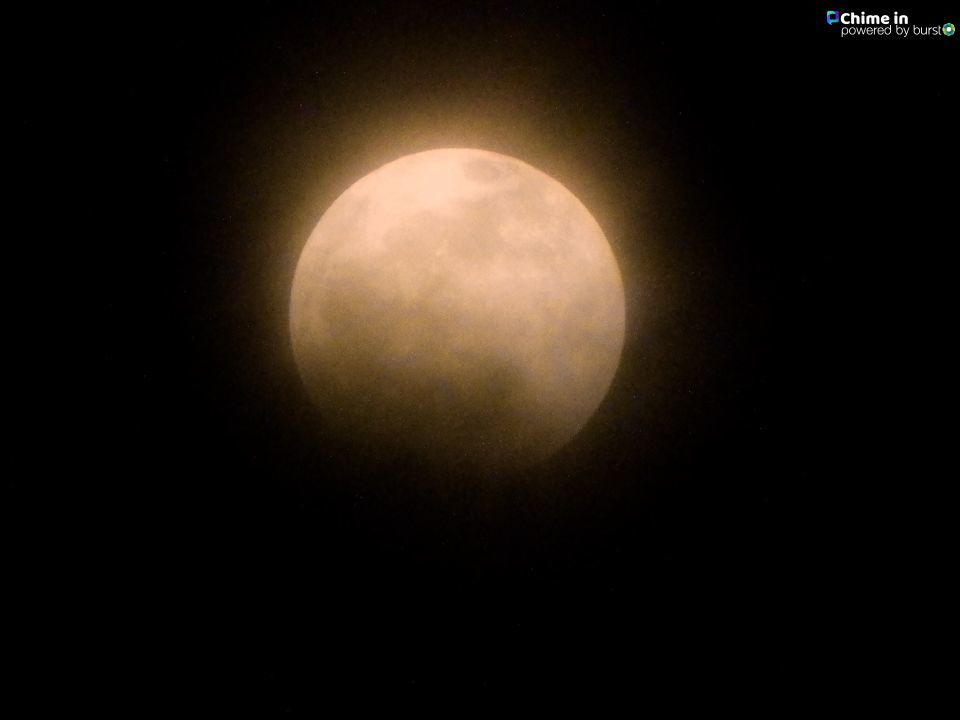'FULL BLOOD WOLF MOON This is the best that I could do before the fog rolled in. Missed the eclipse. Gresham, Oregon'