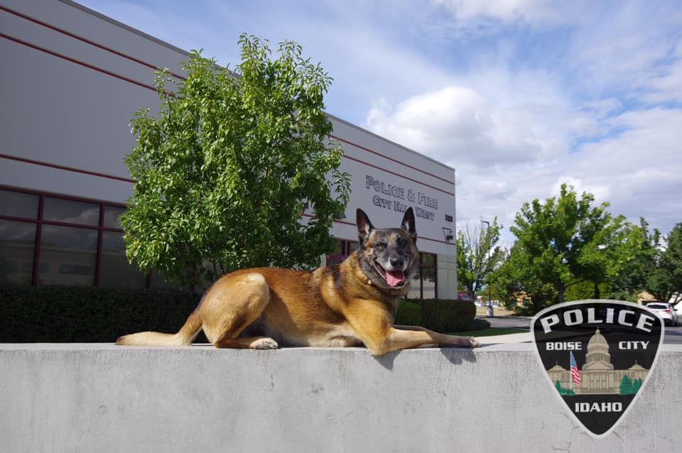 Rosco retiring (courtesy: Boise Police Department){&nbsp;}<p></p>
